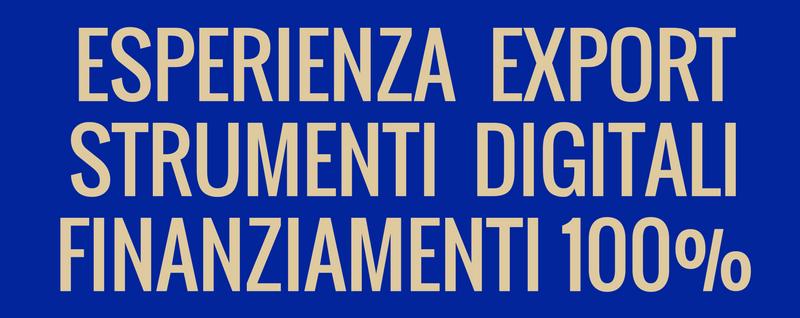 Esperienza Export Strumenti Digitali Finanziamenti 100%